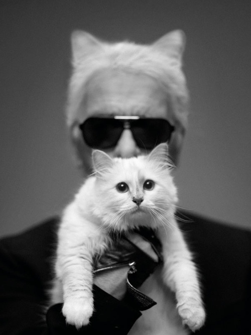 Karl and Kitty