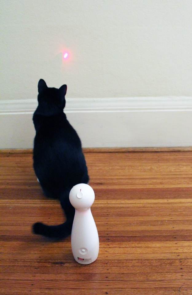 Tux watching laser