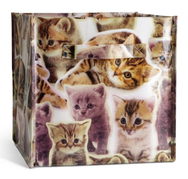 Cat storage box