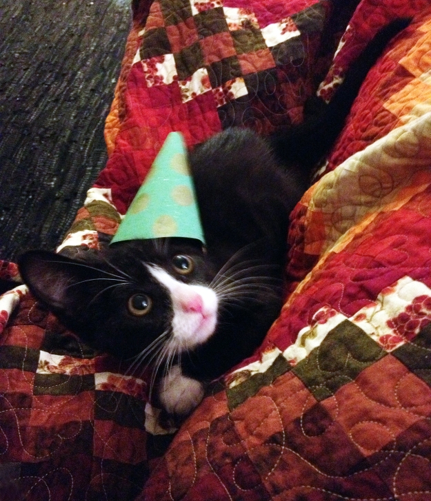 Tux in party hat