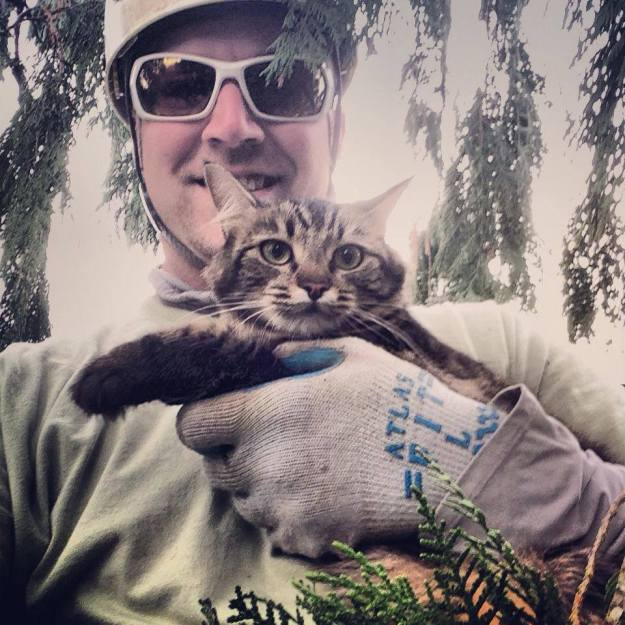 Rescurer with cat