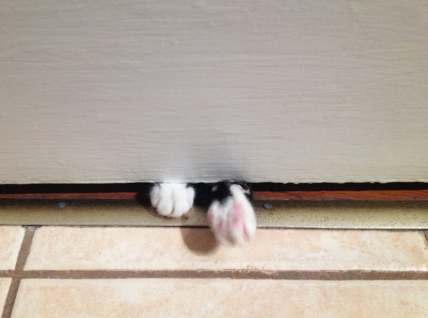 Tux paws under door