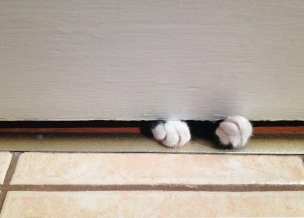 Tux behind door