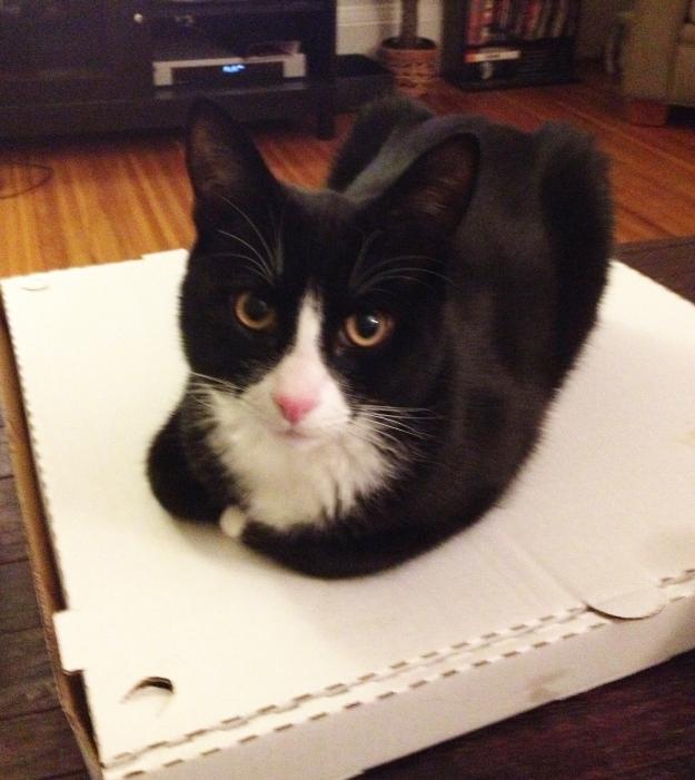 Tux pizza