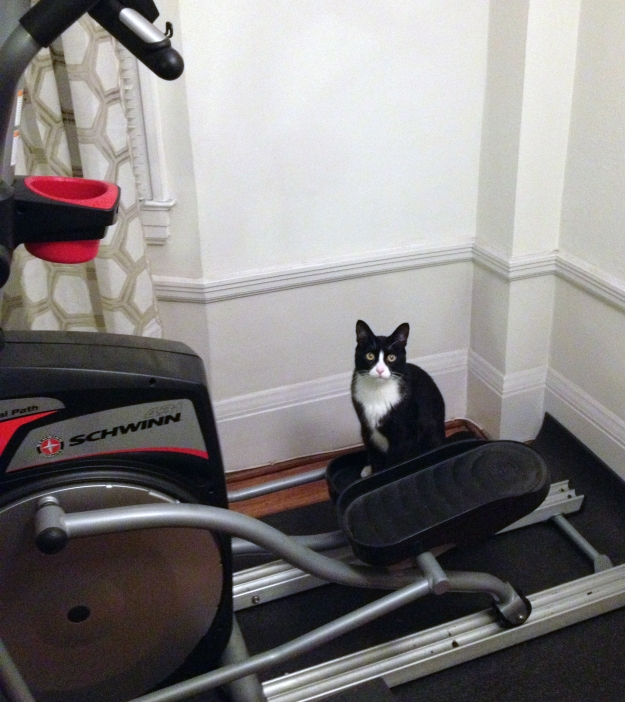 Tux working out