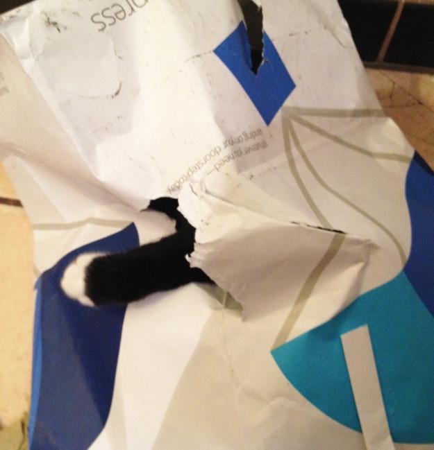 Tux tearing bag