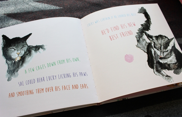 Shelter cat illustrations