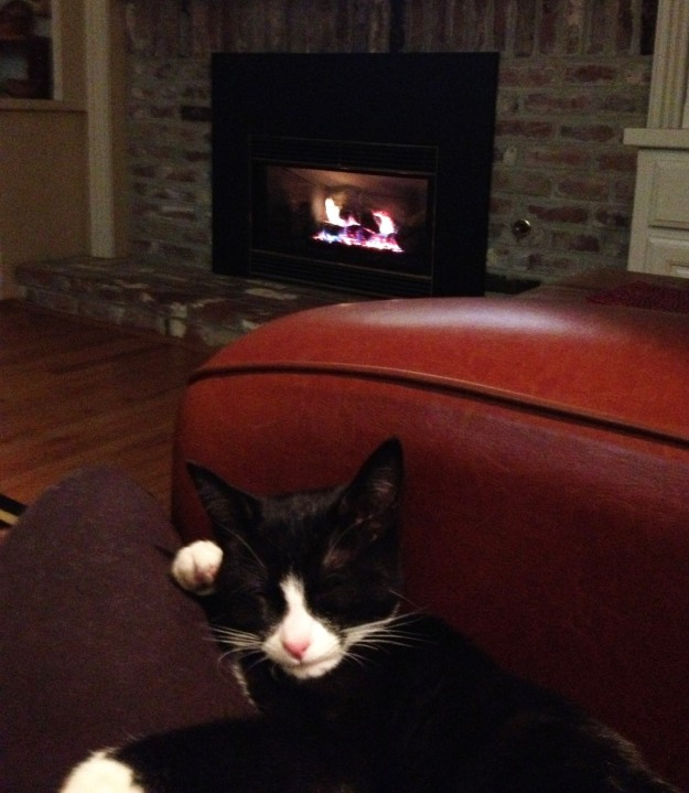 Tux by the fire