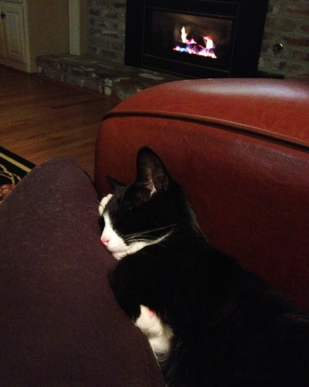 Tux sleeping by the fire 2