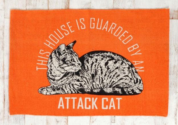 Guard cat mat