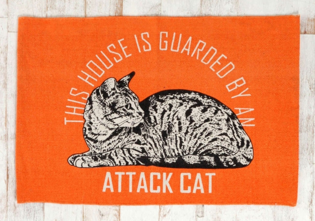 Guard cat mat