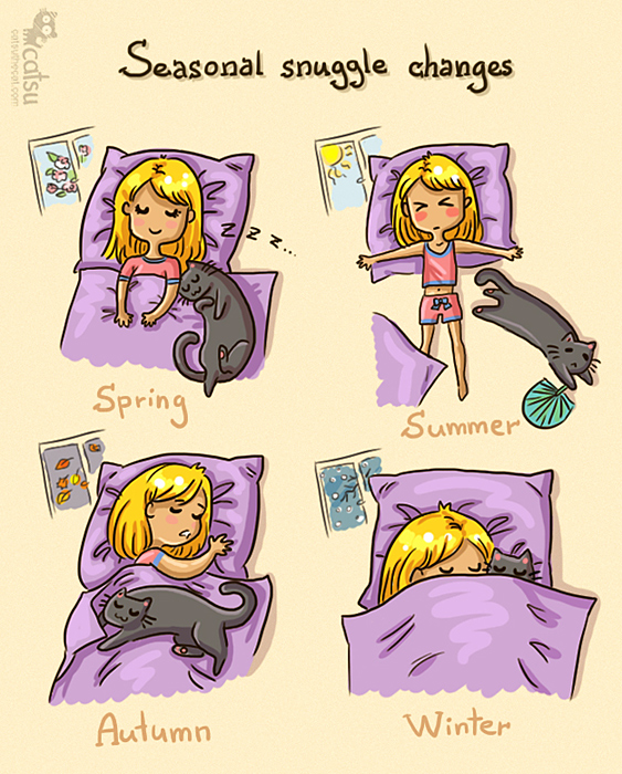 Catsu the Cat - Snuggle positions