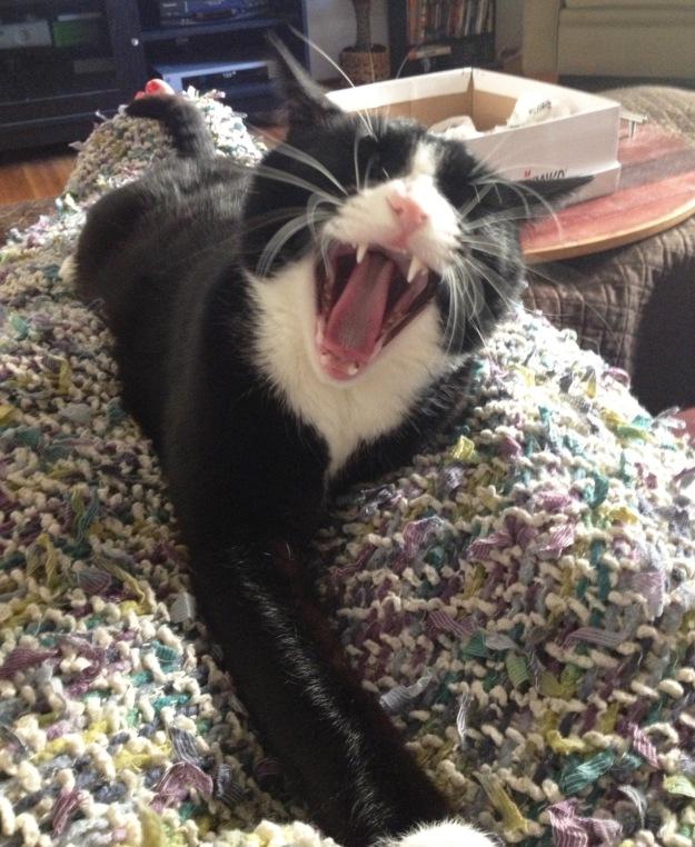 Yelling Tux