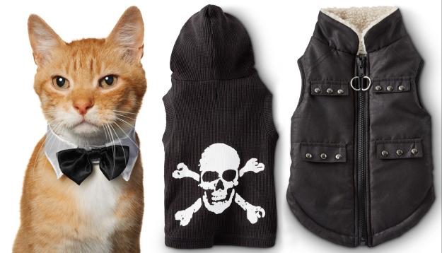 Cat costumes