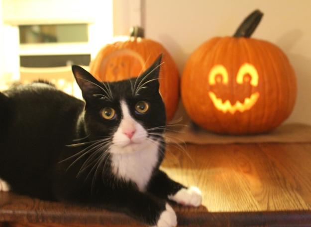 Tux halloween