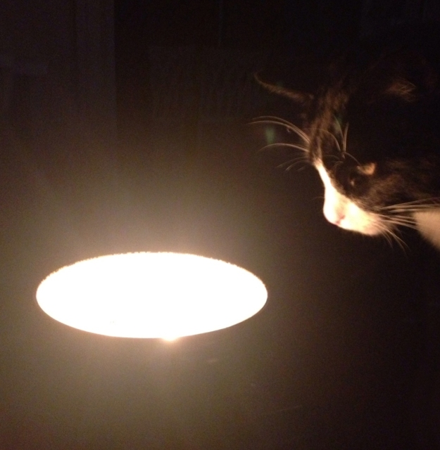 Tux and the candle