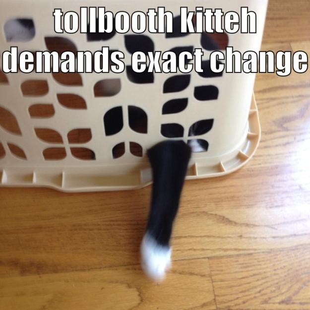 Tollbooth Kitteh meme