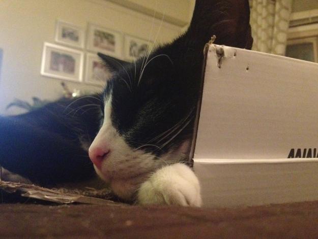 Tux box