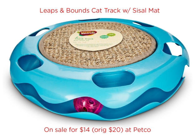 Leaps & Bounds Cat Track