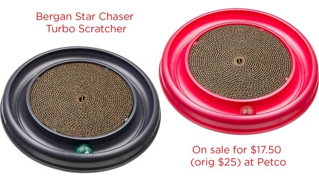 Bergan Star Chaser