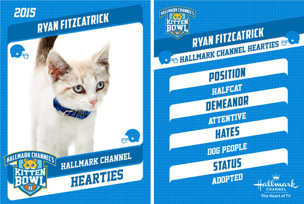 Ryan Fitzcatrick