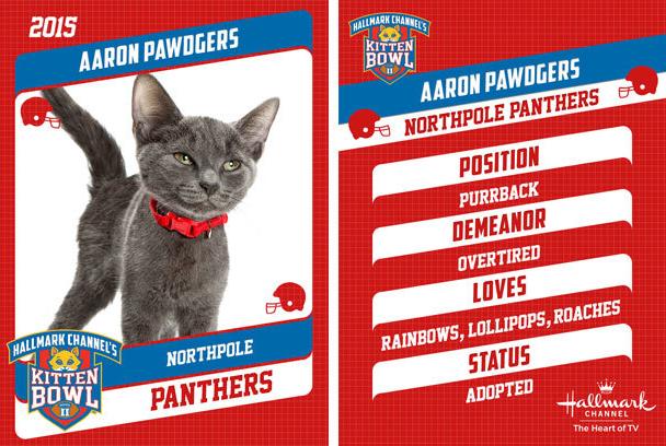 Aaron Pawdgers