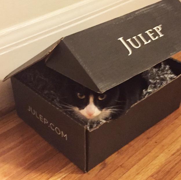 Tux julep box 2
