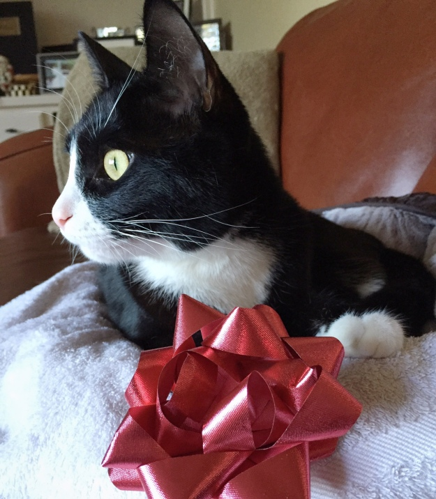Tux with bow
