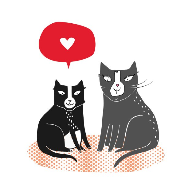 Tuxedo cat love card