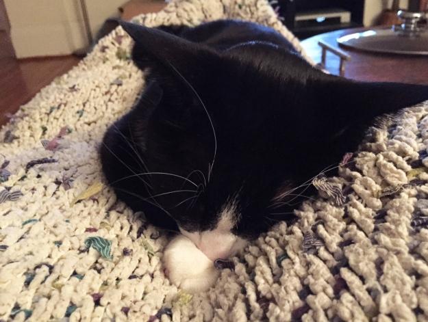 Sleeping Tux