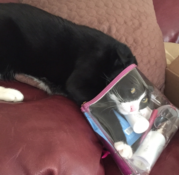 Tux in the bag 1
