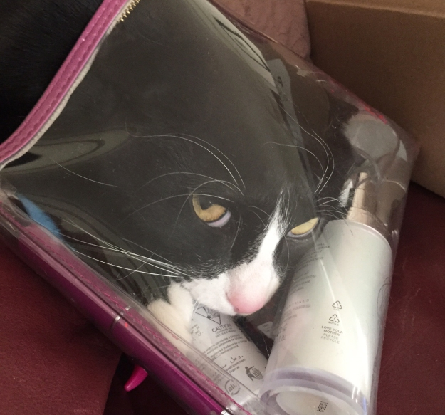 Tux in the bag 2