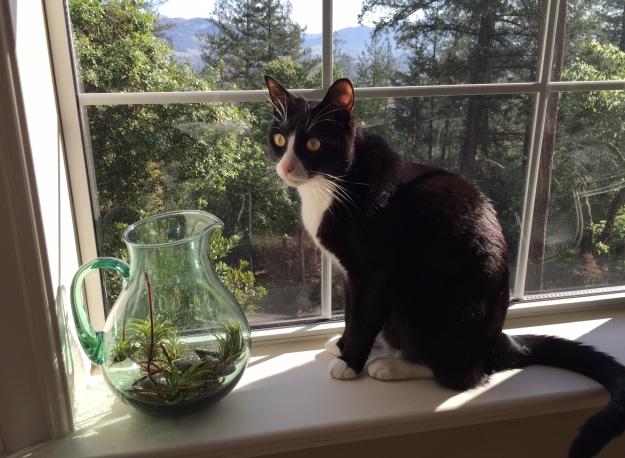 Tux gardening