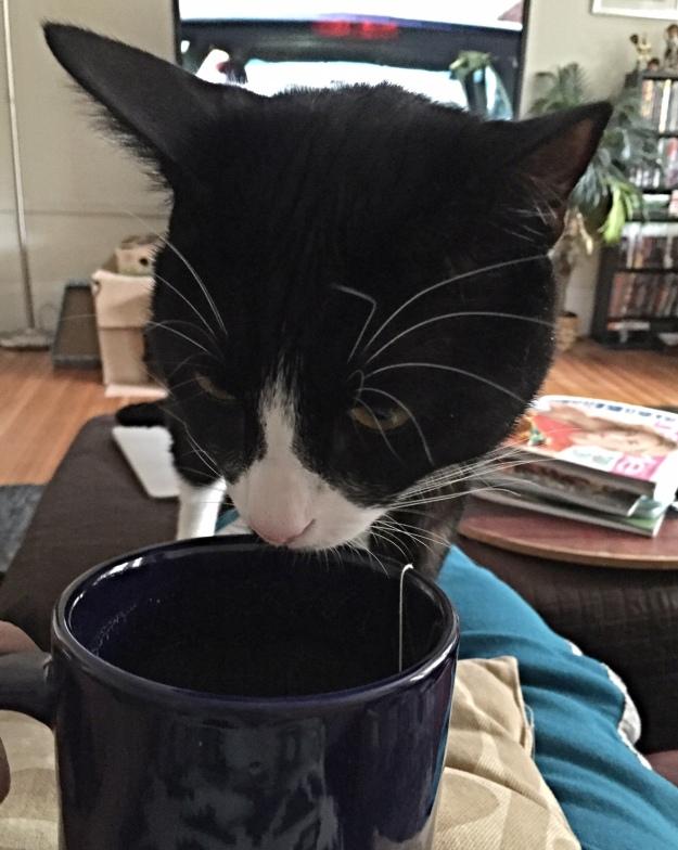 Tux checking the tea temperature