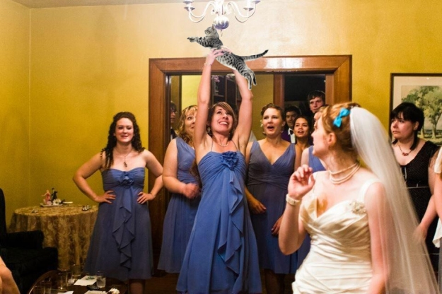 Brides Throwing Cats 4