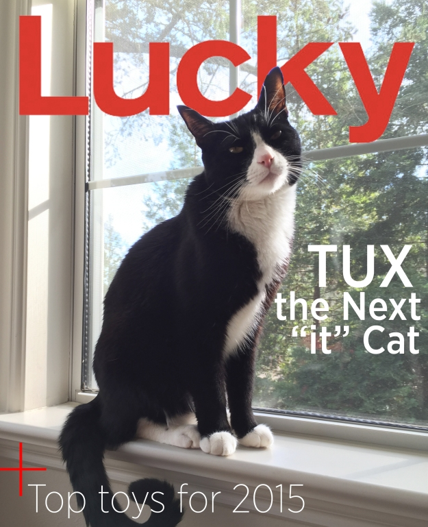 Tux's Lucky magazine cover