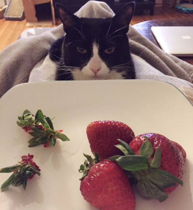 Tux strawberries 2