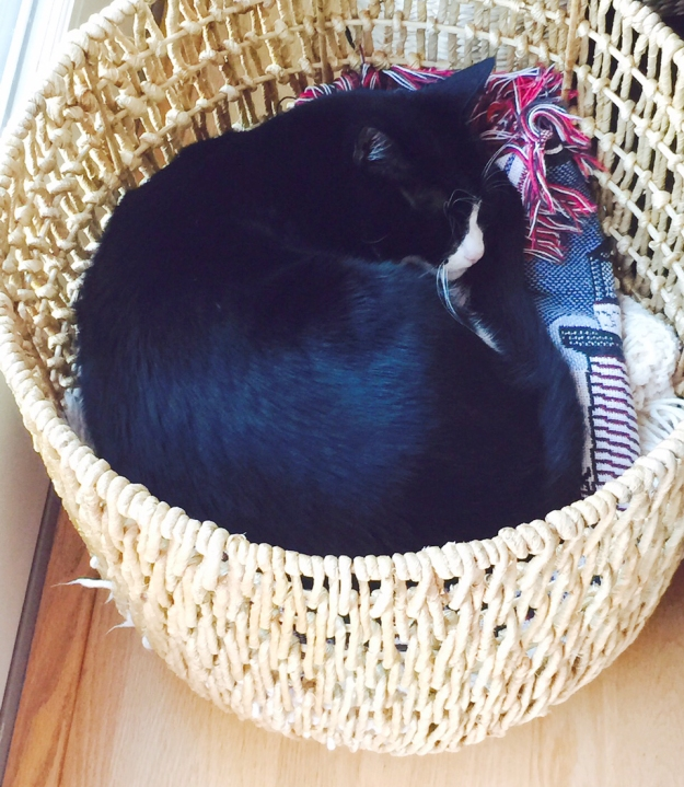 Tux in basket