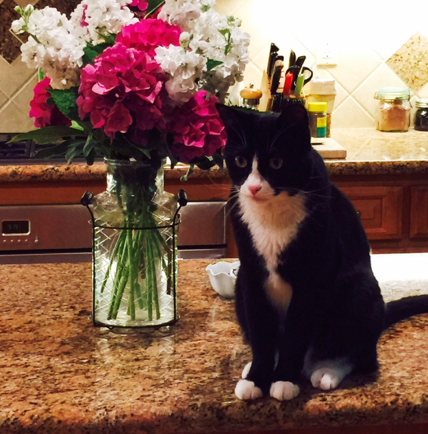 Tux with flowers