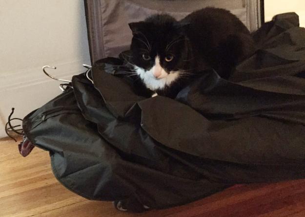 Tux fasion assistant 2