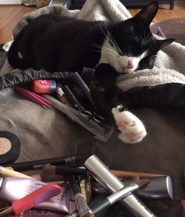 Tux makeup sleeping